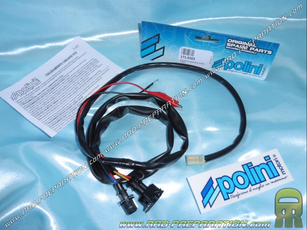 polini wiring for cdi case polini ecu maxi-scooter 4 stroke piaggio  berverly 350cc, fly 125cc, vespa 125/150 & 300cc
